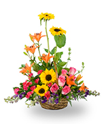 A basket of mixed garden flowers